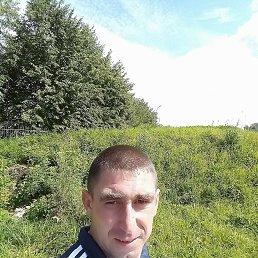 Андрей, 30 лет, Великий Новгород