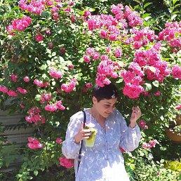 Мариша, 65 лет, Алчевск
