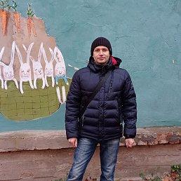 Сергей, 42 года, Житомир