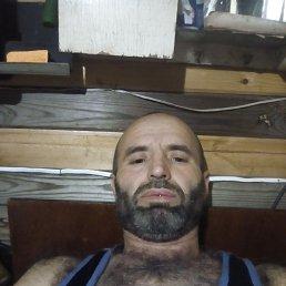 Гарибшо, 47 лет, Жуковский