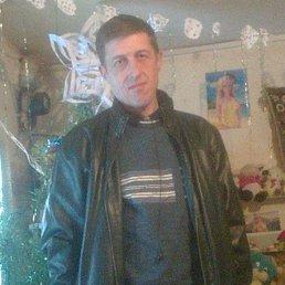 Александр, 43 года, Белгород