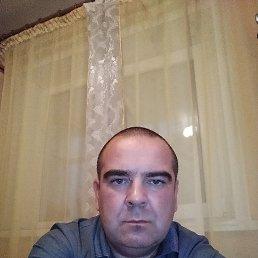 Женя, 43 года, Нижний Новгород