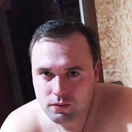 Андрей, 29 лет, Красноармейск