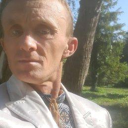 Дмитрий, 37 лет, Тернополь
