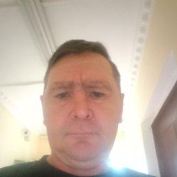 Василий, 45 лет, Лыткарино