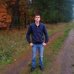 Владимир, 29 лет, Брест