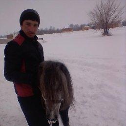Альберт, 26 лет, Славгород