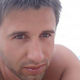 Саша, 45 лет, Дмитров