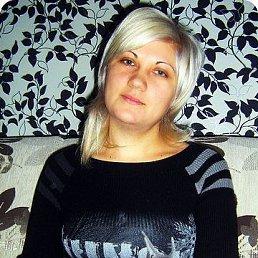 Елена, 38 лет, Краснодар