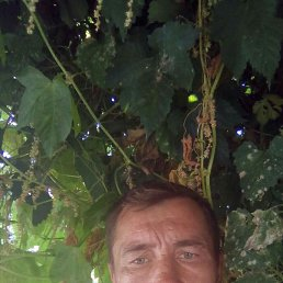 Дима, 40 лет, Залесово