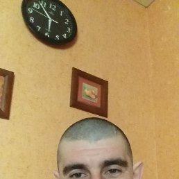 Саша, 36 лет, Тамбов