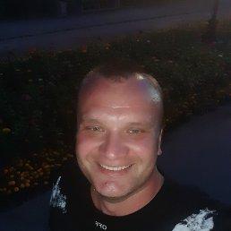 Роман, 32 года, Бийск