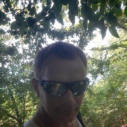 Александр, 36 лет, Брянск