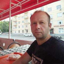 Денис, 37 лет, Мытищи