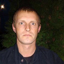 Николай, 37 лет, Запорожье
