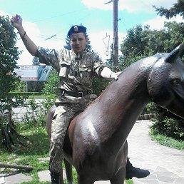 Толя, 30 лет, Ивано-Франковск