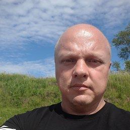 Дмитрий, 41 год, Старая Русса