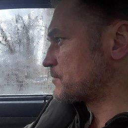 Сергей, 47 лет, Киев