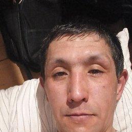 Александр, 37 лет, Кемерово
