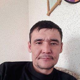 Анатолий, 44 года, Иркутск
