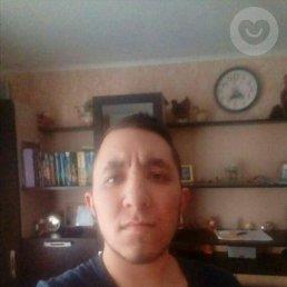 Anatoliy, 25 лет, Михайловка