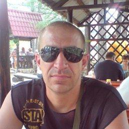 Павел, 41 год, Магнитогорск