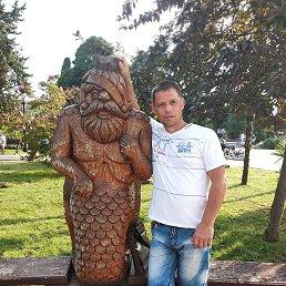 Виталий, 45 лет, Апшеронск