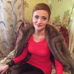Ксения, 29 лет, Белгород