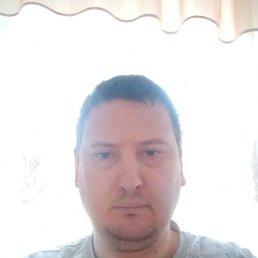 Женя, 37 лет, Кострома