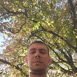 Дмитрий, 29 лет, Лутугино