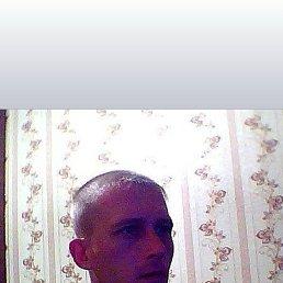 Сергей, 38 лет, Новокузнецк