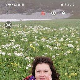 Виктория, 41 год, Краснодар