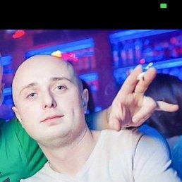 Михаил, 30 лет, Вологда