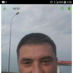 Олег, 49 лет, Голицыно