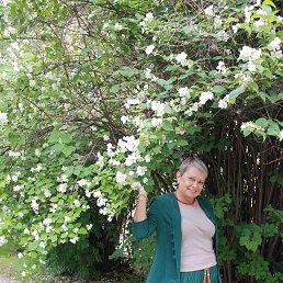 Таня, Санкт-Петербург, 62 года