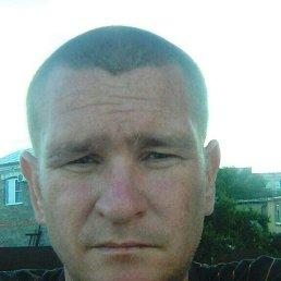 Андрей, 37 лет, Тула