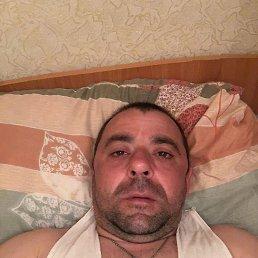 Arkadi, 39 лет, Питерка