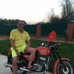 Владимир, 63 года, Сочи