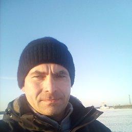 Дмитрий, 42 года, Владивосток