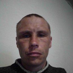 Александр, 35 лет, Киев