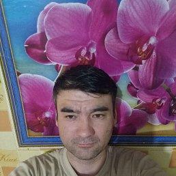 Илья, 37 лет, Казань