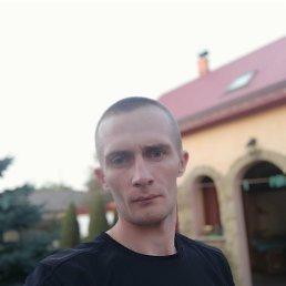Ром, 29 лет, Луцк