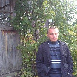 Антон, 37 лет, Сыктывкар