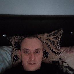 Николай, 34 года, Сочи