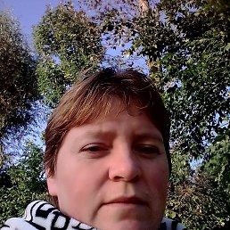 Наталья, 33 года, Ярославль