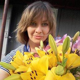 Елена, 41 год, Сумы