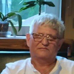 Владимир, 64 года, Дивноморское