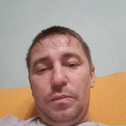 Дмитрий, 35 лет, Кемерово