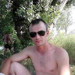 Алексей, 33 года, Химки