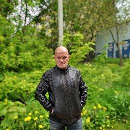 Иван, 43 года, Истра